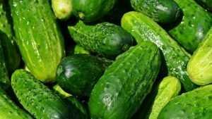 Овощи и фрукты в России подешевеют