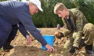 Президент Белоруссии Лукашенко выкопал на выходных свою картошку
