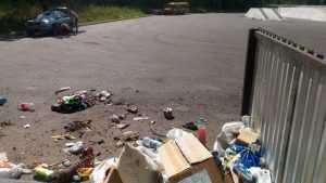 Жители области возмутились свалкой на федеральной трассе Брянск – Гомель