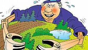 Брянскую агрофирму накажут за незаконный захват земельного участка