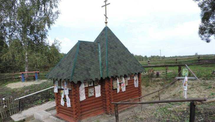 В брянском посёлке освятили восстановленный родник