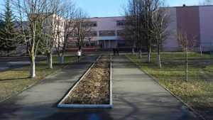В Брянске за 301 миллион возведут пристройку к школе 59