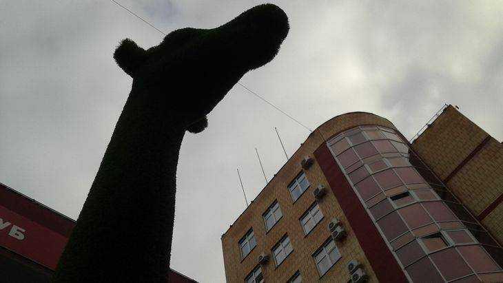 В Брянске рядом с зелеными медведями поселился зеленый жираф