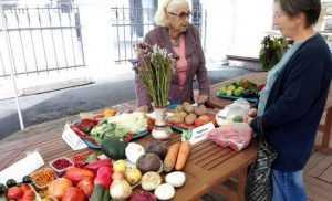 Урожай чудес показали в Брянске огородники и садоводы