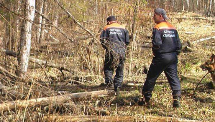 Брянцы начали поиски пропавшего в лесу 80-летнего Ильи Цыганкова