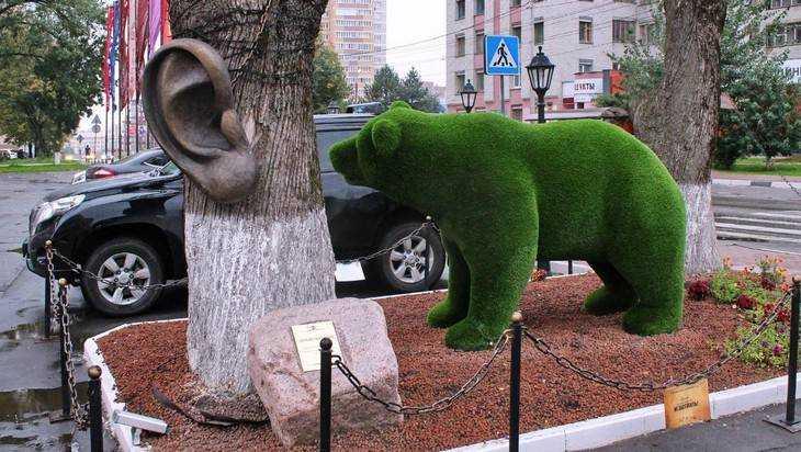 В Брянске зеленый медведь поселился у дерева с ухом