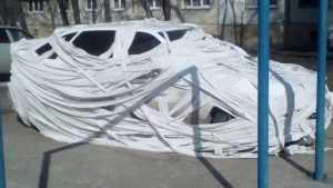 В Брянске автомобиль обмотали туалетной бумагой