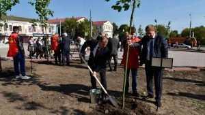 В Семеновском сквере Брянска высадили аллею Дружбы