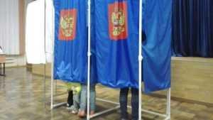 В Брянском районе и городе Фокино начались выборы