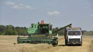 На брянских полях собрали более миллиона тонн зерна