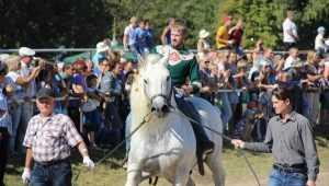 В брянском Локте пройдёт традиционный спортивный праздник наездников