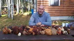 Брянский депутат Валуев похвастался вкусным жарким из белых грибов
