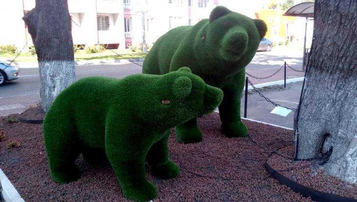 В Брянске зелёному медведю подарили зелёную подругу