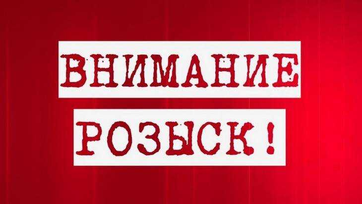 Полиция обратилась к очевидцам столкновения фуры и «ВАЗа» под Брянском