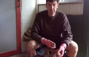 Брянский дачник рассказал о грушах и процветающем мародерстве
