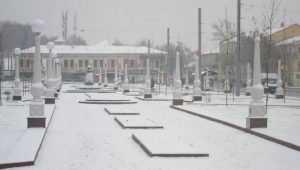 Реконструкцию Семёновского сквера Брянска завершат 27 октября
