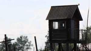 Брянский суд отправил убийцу самогонщика в колонию на 10 лет