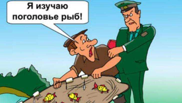 Брянские борцы с браконьерами пристыдили любителей пойла и краденой рыбы