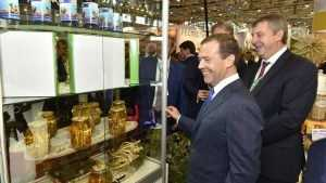 Дмитрия Медведева развеселил брянский женьшень на «Золотой осени»