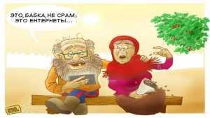 Неработающих брянских пенсионеров научат за 600 тысяч рублей сёрфить