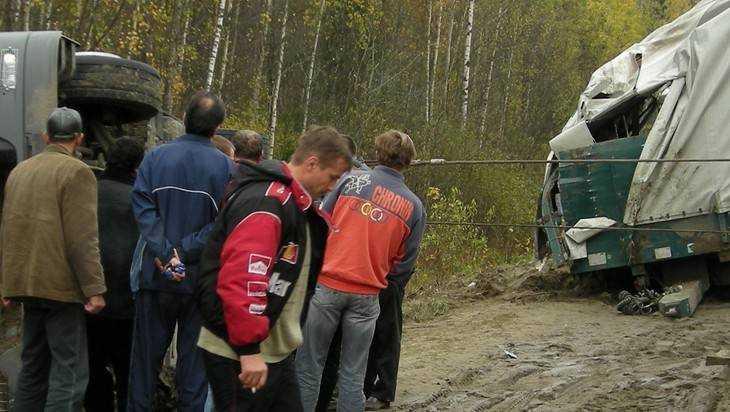 Под Брянском в опрокинувшемся грузовике водитель сломал ногу