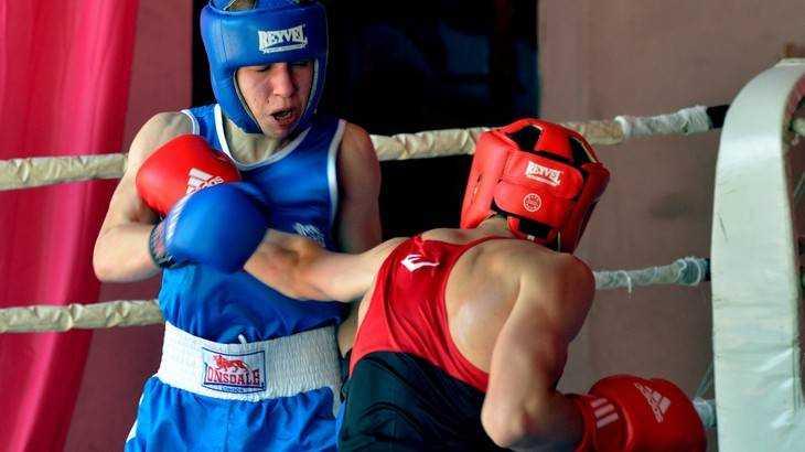 Брянские боксеры хорошо подрались в Орле