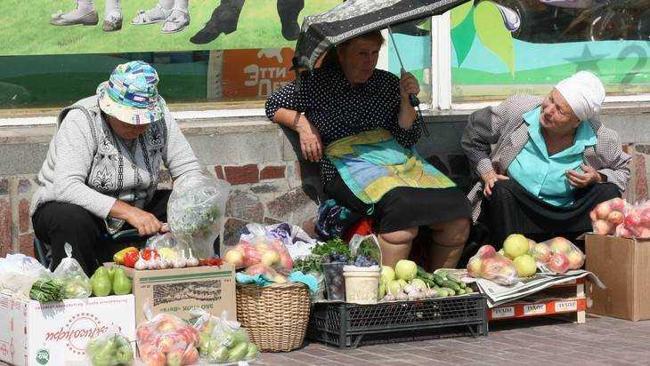 В Брянске ветеринары отобрали у украинок 122 килограмма колбасы и сала