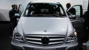 Из брянских быков будут делать BMW и Mercedes