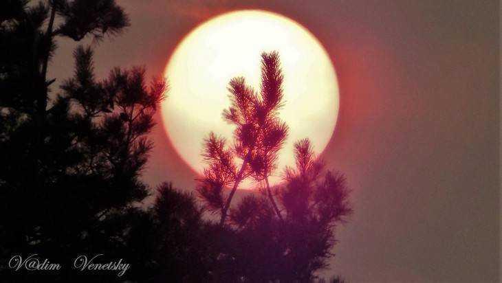 Брянский фотограф снял удивительный закат солнца