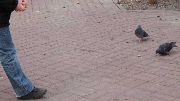 Жителя Почепа осудили на три года за истязания сына