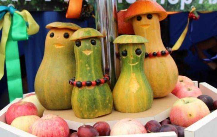Брянские крестьяне отказались страховать свои посевы