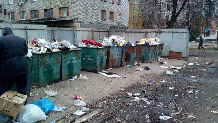 Уроженец Брянска вернулся в город и ужаснулся мусорным завалам