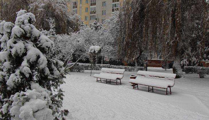 В Брянской области на борьбу со снегом направят 485 машин
