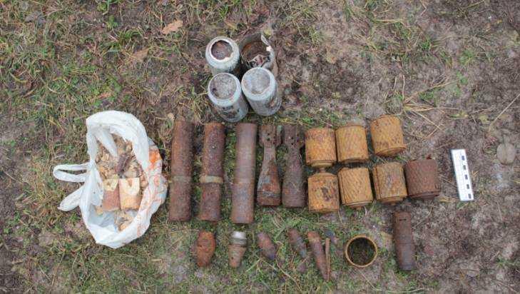 Полиция обнаружила в доме брянца винтовку и 750 боеприпасов