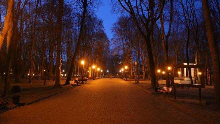 В Брянске опровергли новость «адского» сайта о мраке в парке Толстого