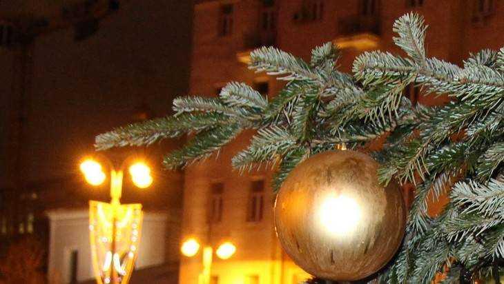 В Брянске установят более 30 живых новогодних ёлок