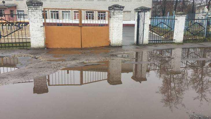 В Брянске родители пожаловались неприступную лужу у школы №14