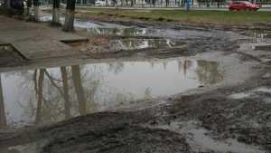 Жители Фокинского района Брянска пожаловались на разбитые дороги