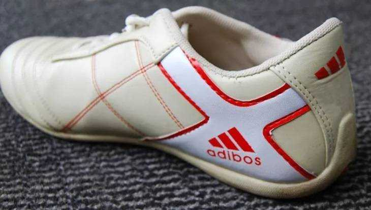 Брянца накажут за торговлю поддельными кроссовками Adidas и Nike