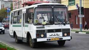 В брянском автобусе из-за торможения разбились девушка и пенсионерка