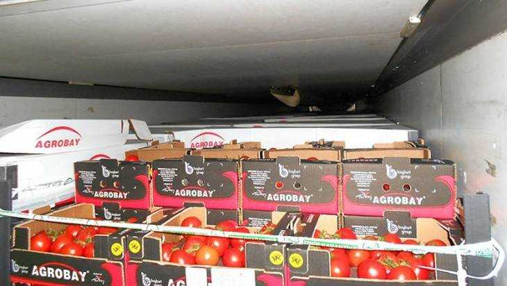 Брянскую границу пересекла первая фура с турецкими помидорами