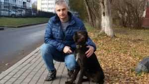 В Брянске гулявший с собакой полицейский поймал автовора