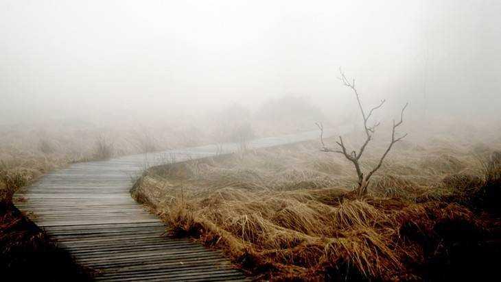 В Брянской области МЧС объявило о мокром снеге, гололеде и тумане