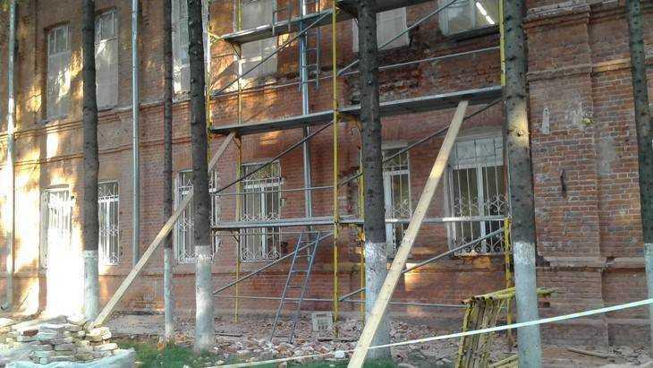 Вырубку елей в Брянске объяснили плохим проветриванием Винного замка