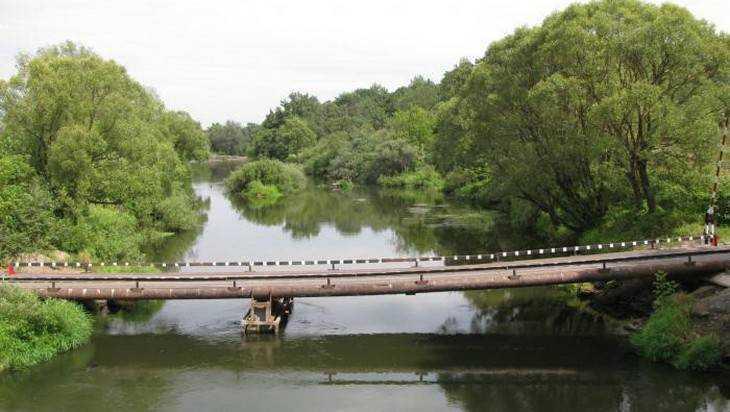 Под Брянском решили украсть целый мост
