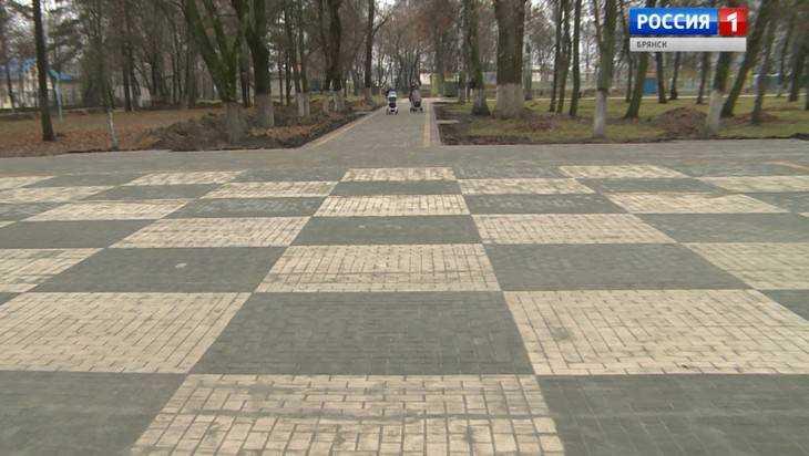 Брянский парк украсила 100-метровая шахматная доска-тротуар
