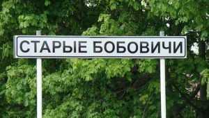 В Новозыбковском районе нашли повешенным 63-летнего пенсионера