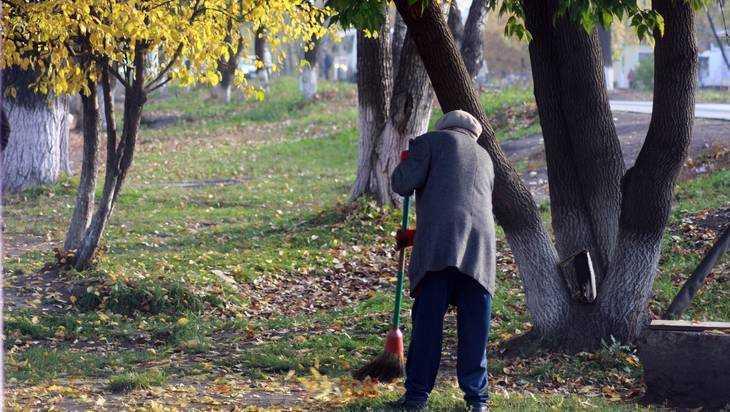 Более 2 тысяч брянцев искупили свою вину метлой