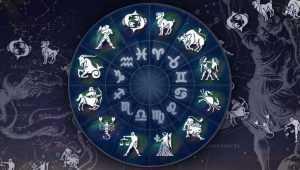 Для брянских чиновников составили справедливый гороскоп