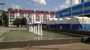 Власти Брянска закроют белорусскую ярмарку на площади Партизан